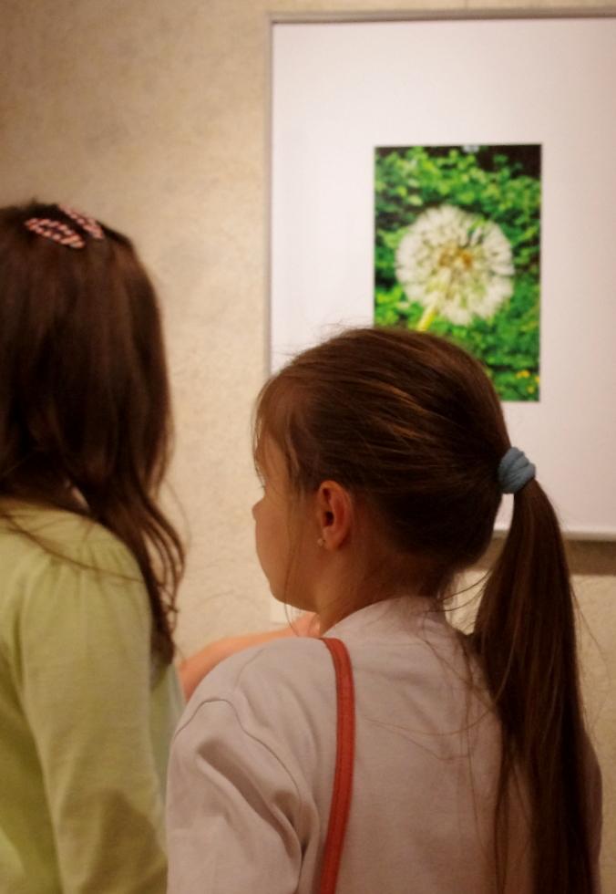 Glogowek_muzeum_mikro_makropejzaz_fotograficzny_wystawa_20
