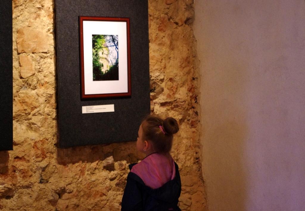 Glogowek_muzeum_mikro_makropejzaz_fotograficzny_wystawa_4